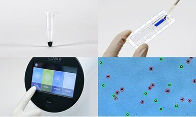 biosystems automated cellcounter convenient workflow
